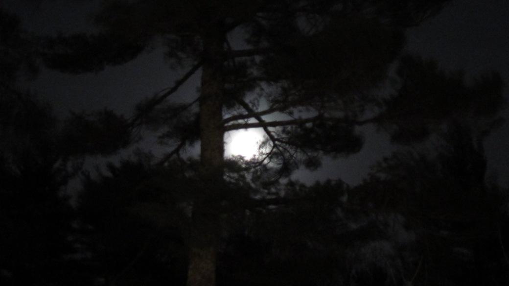 Rochester Full Moon 001