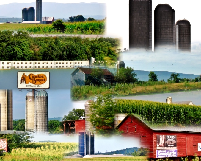 farm country collage