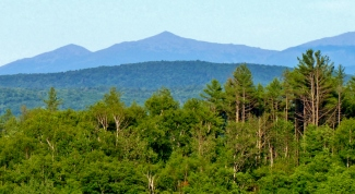 Is a mountain not as beautiful in green and blue...
