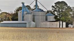 0026-2-modern-farm