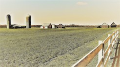 3014-2-long-view-little-farm