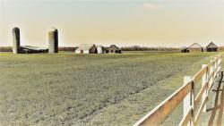 3014-2-long-view-little-farm