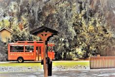 dsc_5125-trolleyedit